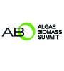 abs_logo 2